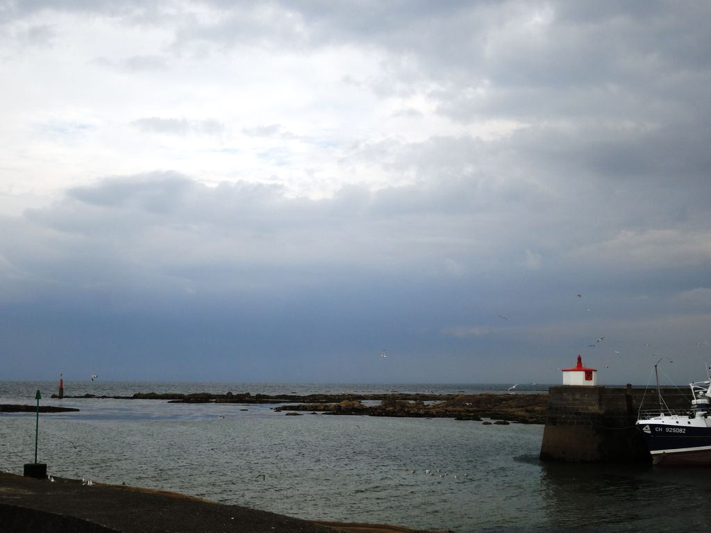 Normandie_Cotentin_32